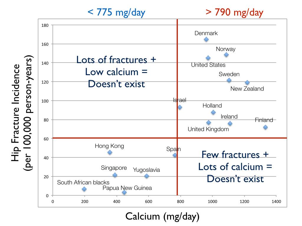 Hoe meer calcium hoe meer botbreuken