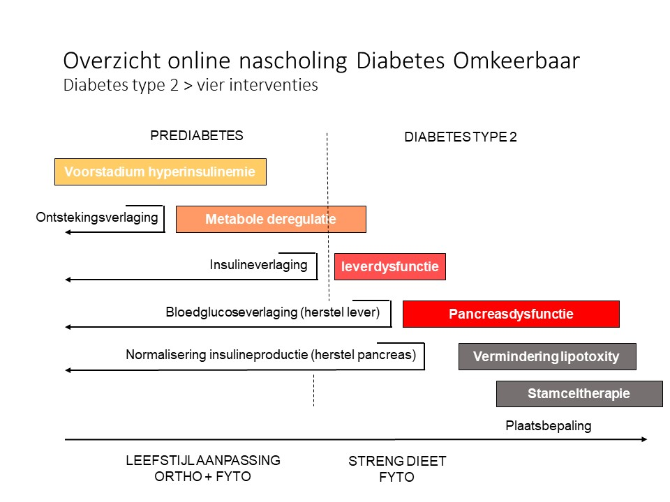 Interventiestappen Diabetes Omkeerbaar